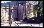 Spider Gate