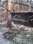 Ice Storm Tragedy