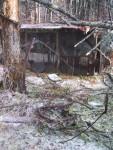 Ice storm Tragedy 2